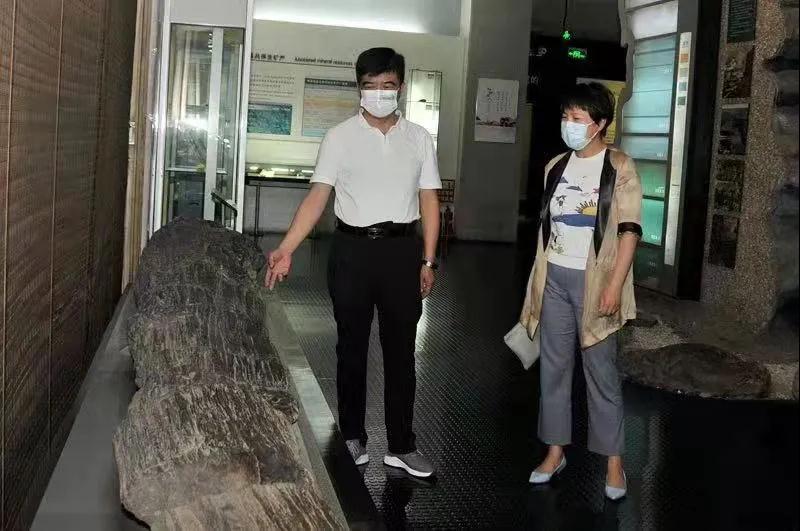刘红雨在中国煤炭博物馆调研